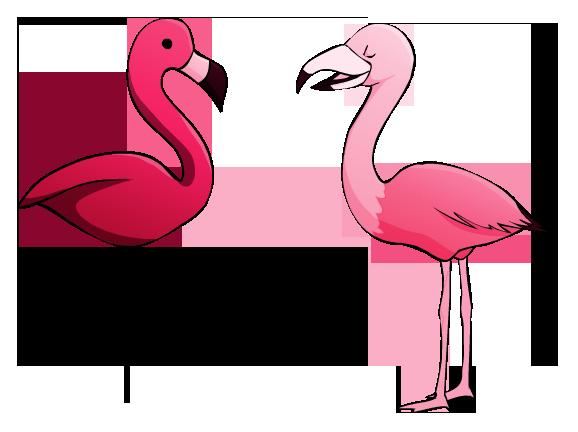 Daily Doodle Flamingos